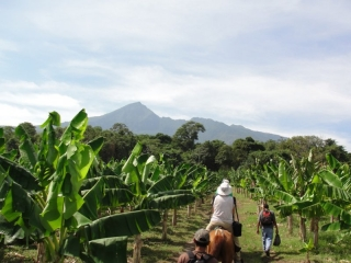 Activities in Nicaragua - You ca visit most of the sights on horseback